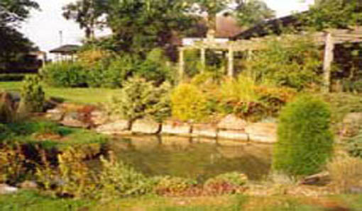 Pond and rockery in the Peace Gardens
