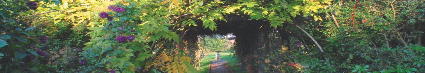 view down the walkway of the pergola